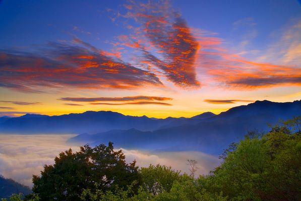 阿里山國家風景區官網