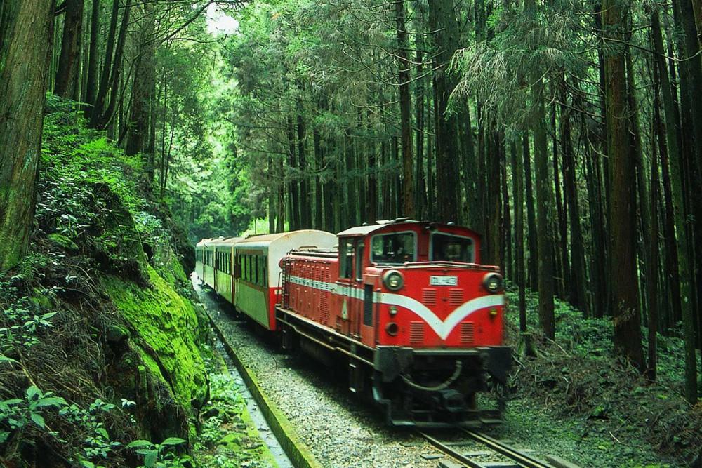 阿里山林業鐵路及文化資產管理處